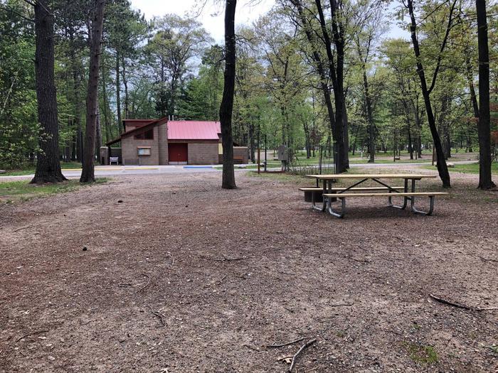 Campsite #45 BackCampsite #45