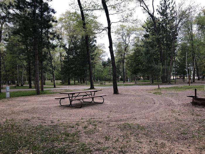 Campsite #55