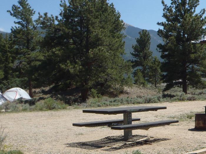 White star Campground, site 4