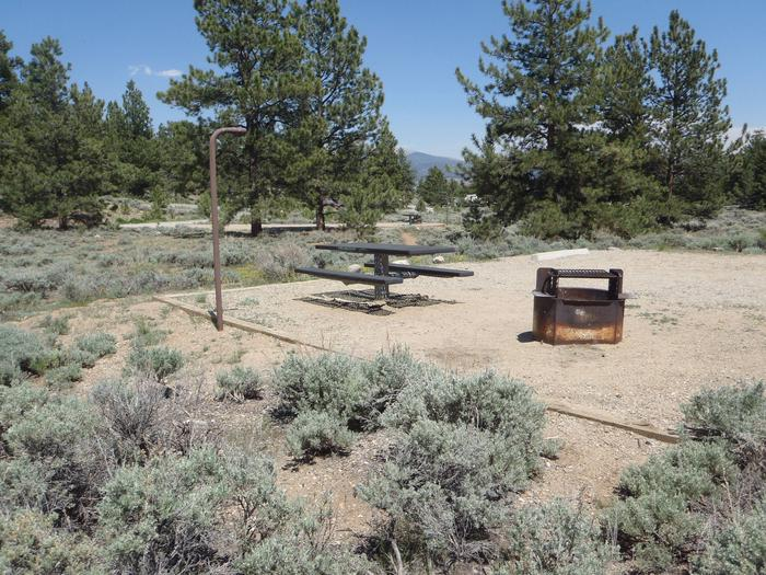 Whitestar Campground,  site 4 picnic table and fire ring
