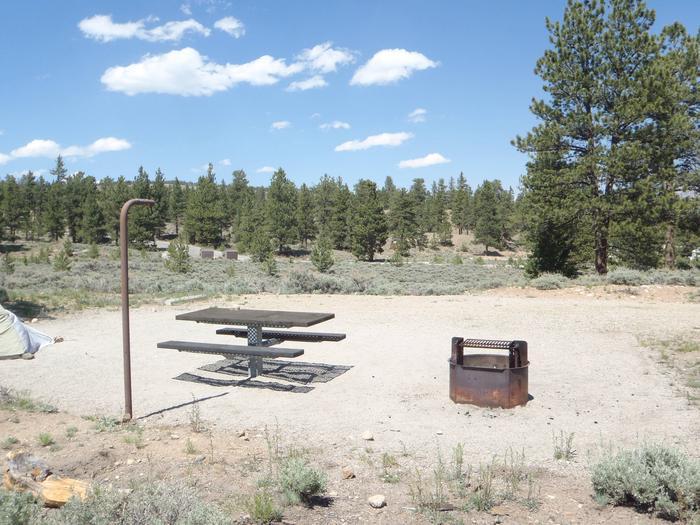 Whitestar Campground,  site 8