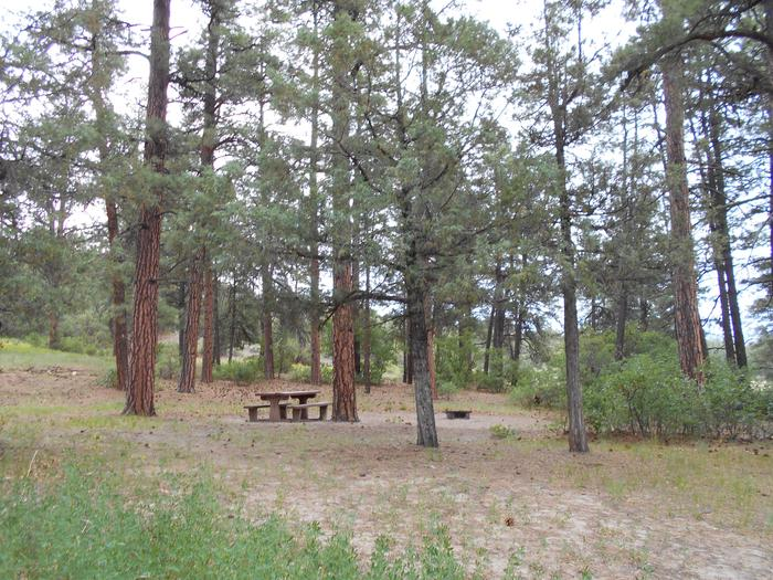 Ute Campground SiteUte