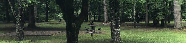 view of walk-up campsites
