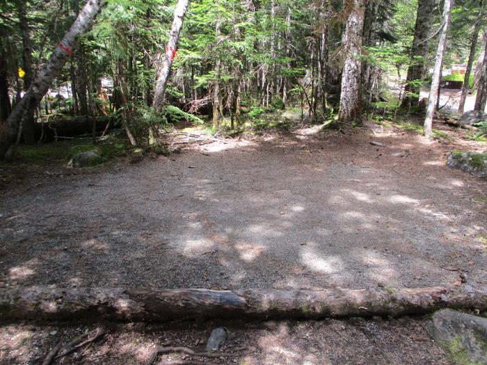 Tent pad with flat open ground cleared for tentTent Pad