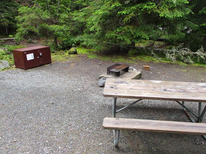 Picnic Table, Fire ring, and Bear boxSite amenities.