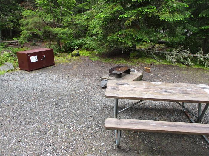 Picnic Table, Fire ring, and Bear boxSite amenities