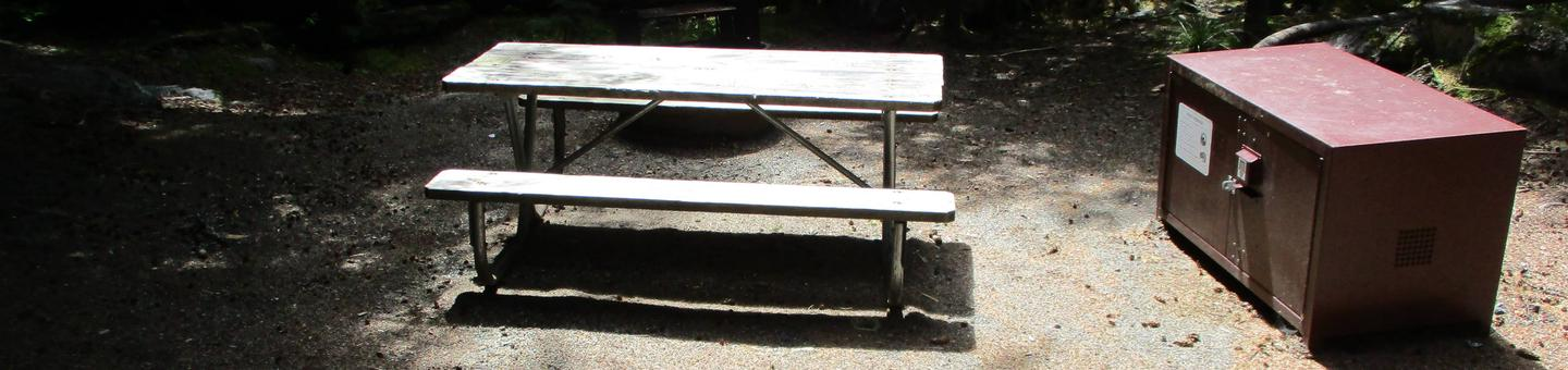 Picnic Table, and Bear BoxSite Amenities