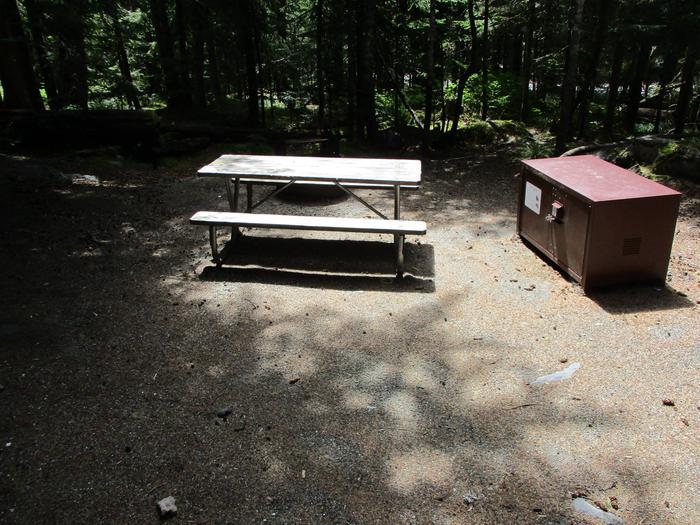 Picnic Table, Bear BoxSite amenities.