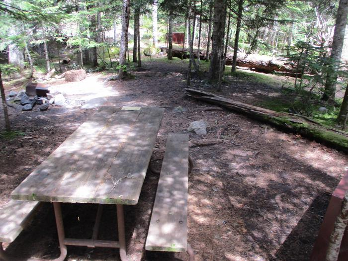 Site amenities.Picnic table, Fire Ring, and Bear box.