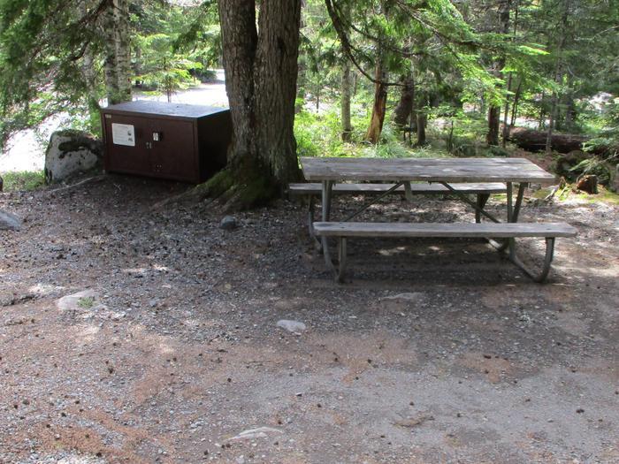 Site amenities.Bear box, picnic table