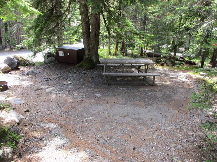 Site amenities.Picnic table, bear box, fire ring, tent space.