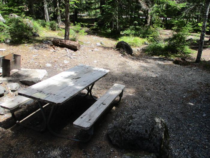 Site amenities.Picnic table, fire ring.