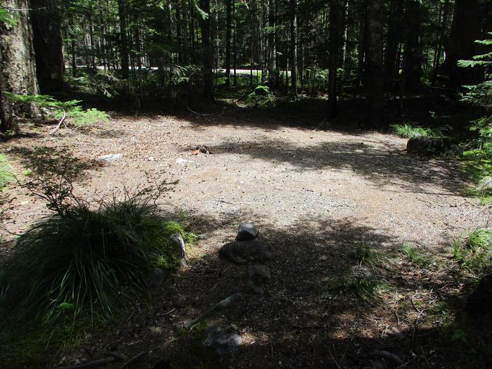 Open area, moderate sun.Tent space.