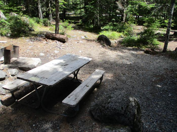 Site amenities.Fire ring, picnic table, and open area.