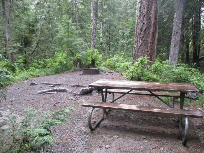 Picnic Table and Fire RingPicnic Table and Fire ring