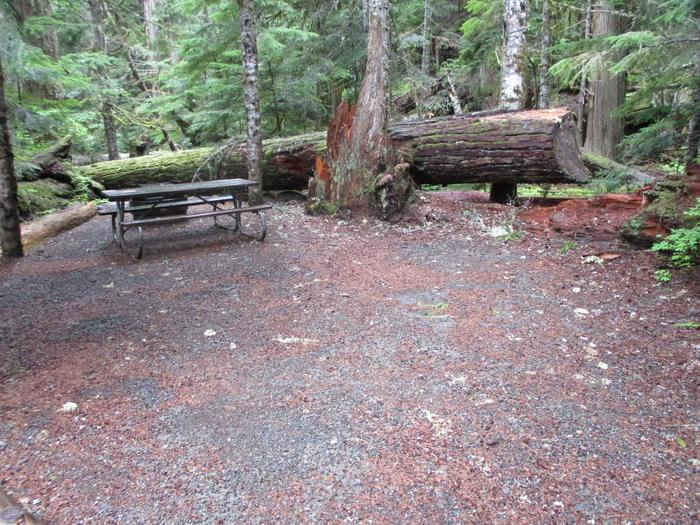Picnic Table and Tent Area