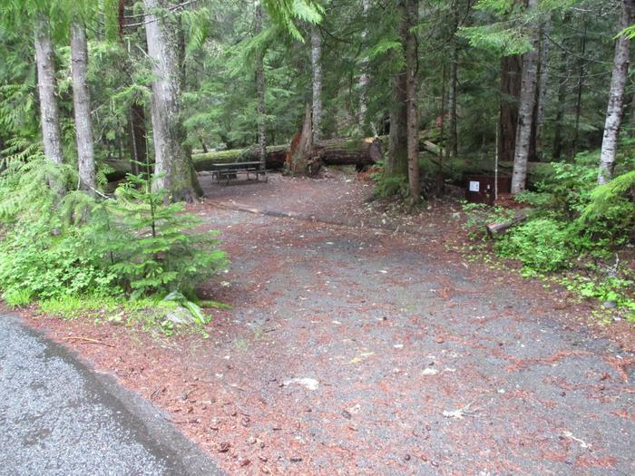 Driveway and Bear Box