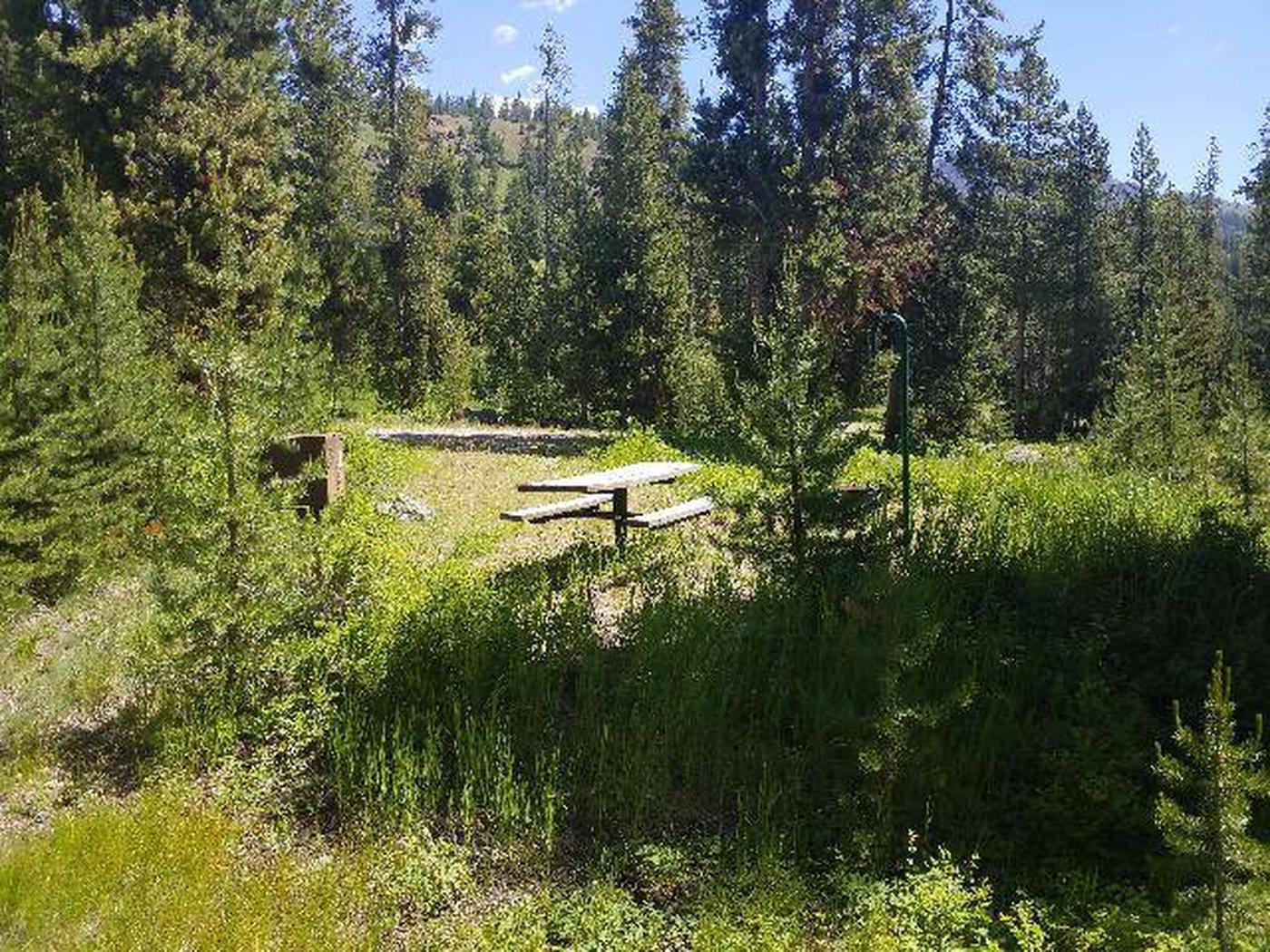 Threemile Campground Campsite 18 - Back View