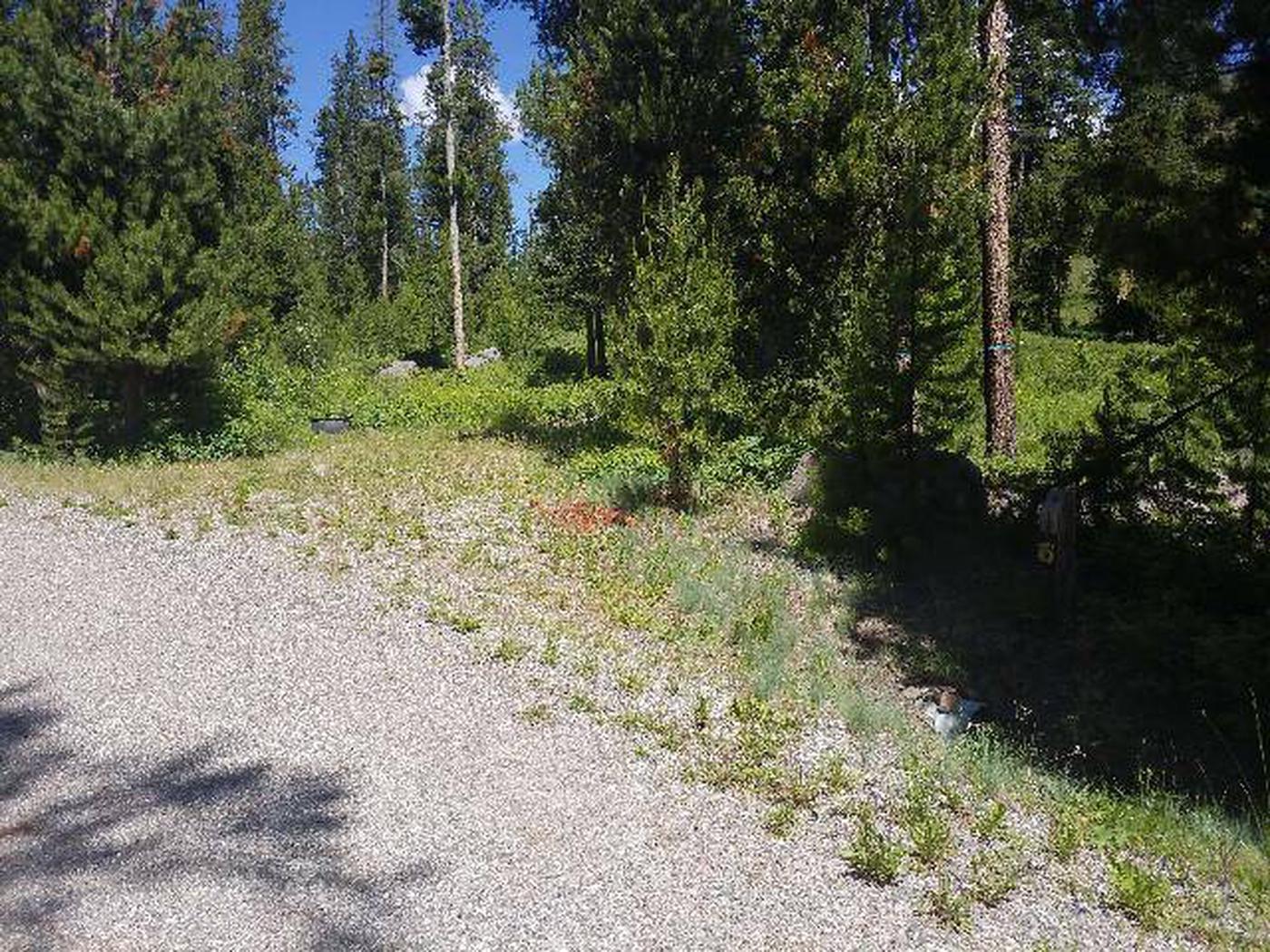 Threemile Campground Campsite 19