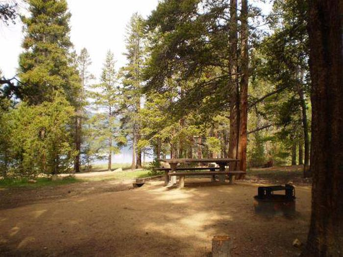 Baby Doe Campground, site 14