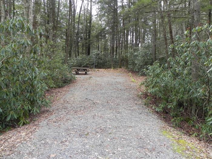 Driveway to Site 38