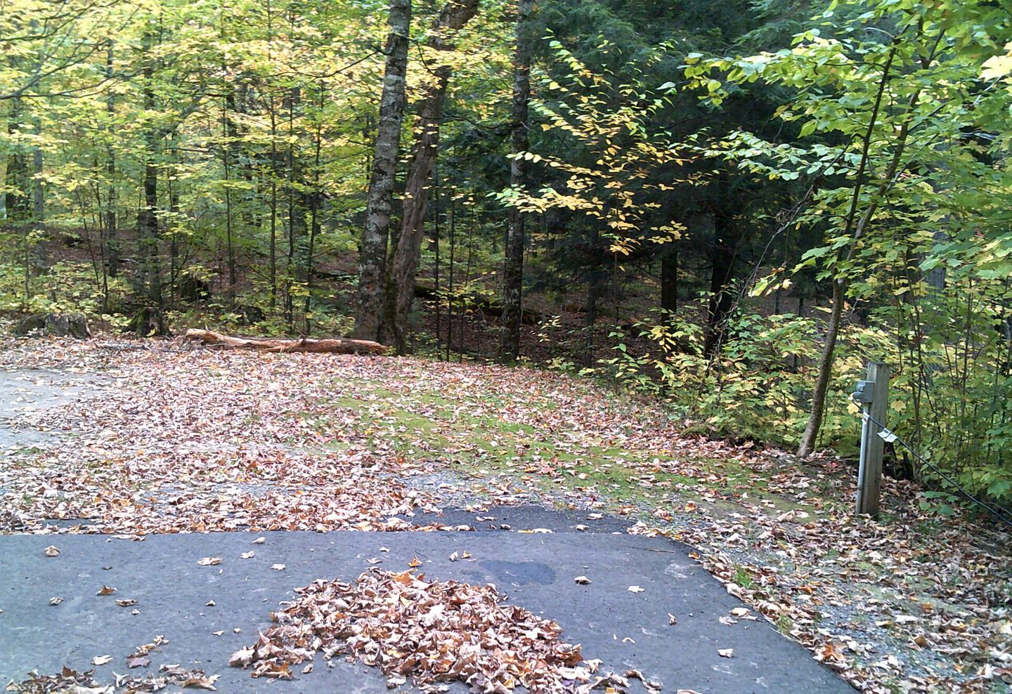 Right view of Clark Lake Campground campsite 45Right view of Clark Lake Campground campsite 45.