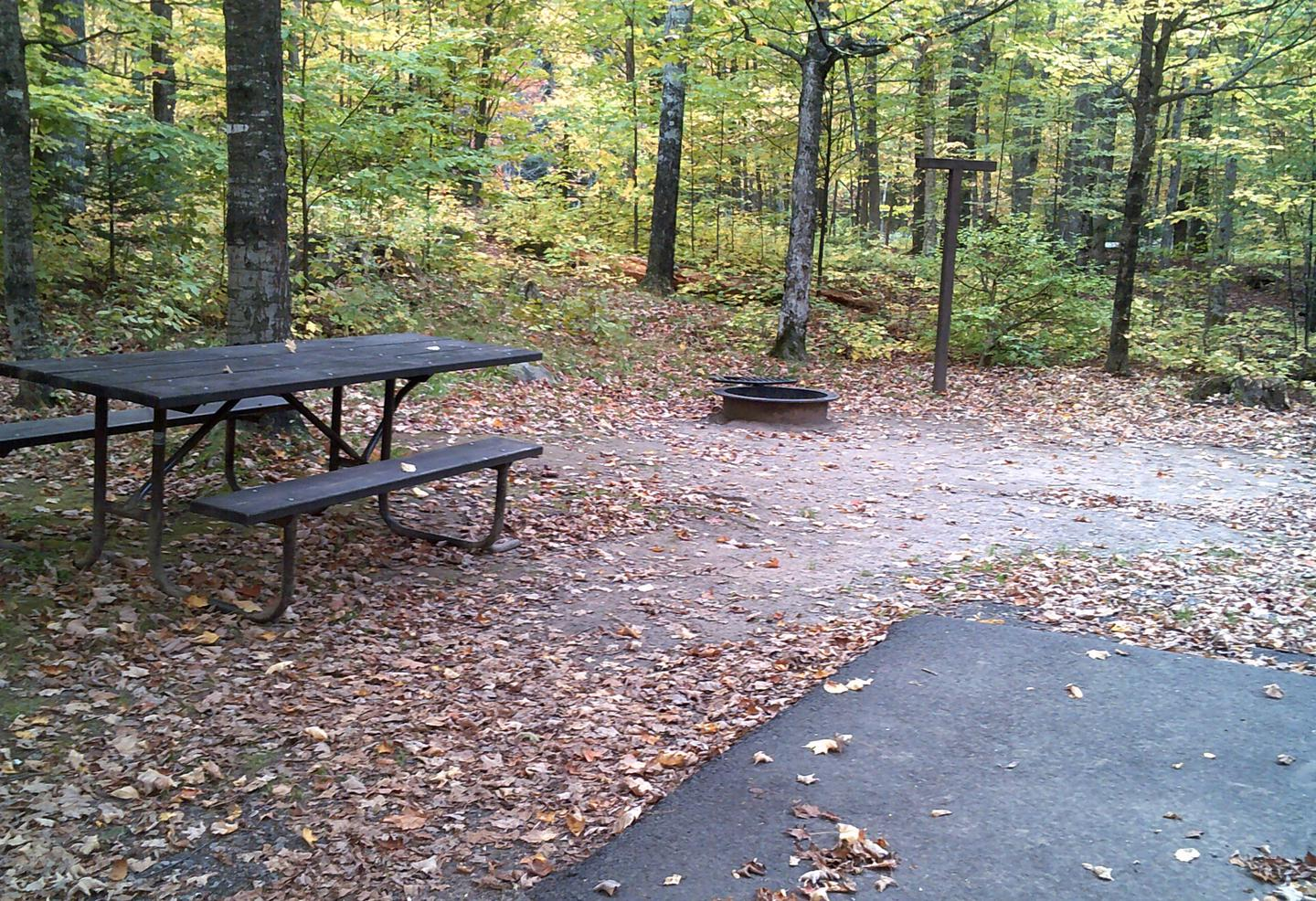 Left view of Clark Lake Campground campsite 45Left view of Clark Lake Campground campsite 45.