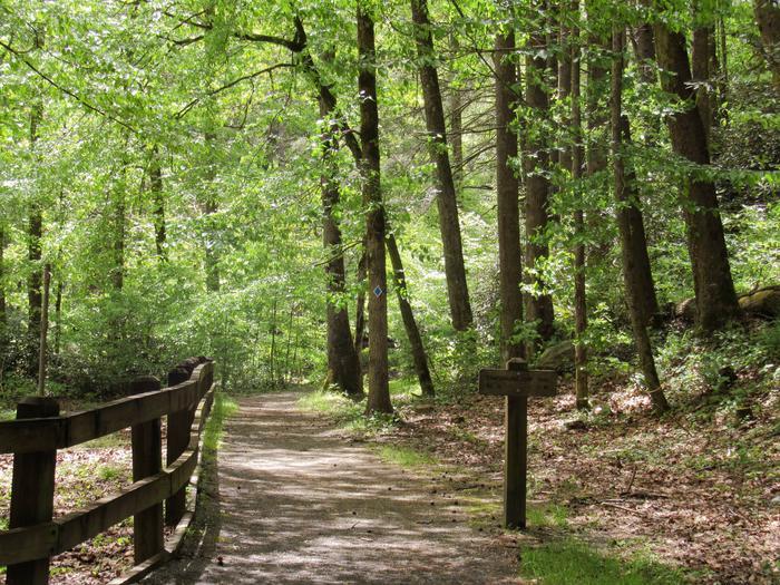 Campground Trail