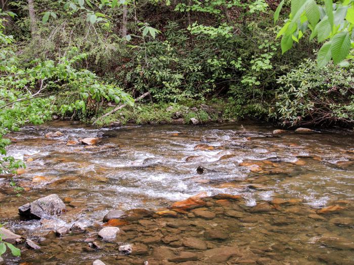 Paint Creek