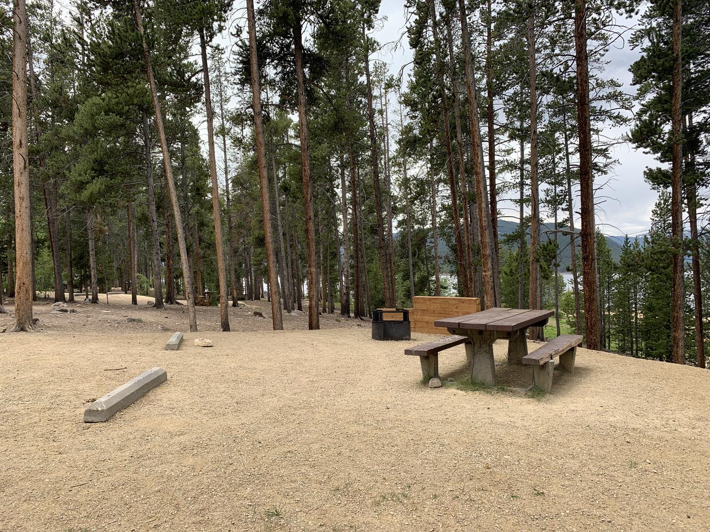 Molly Brown campground, site 8 picnic table and fire ring 3