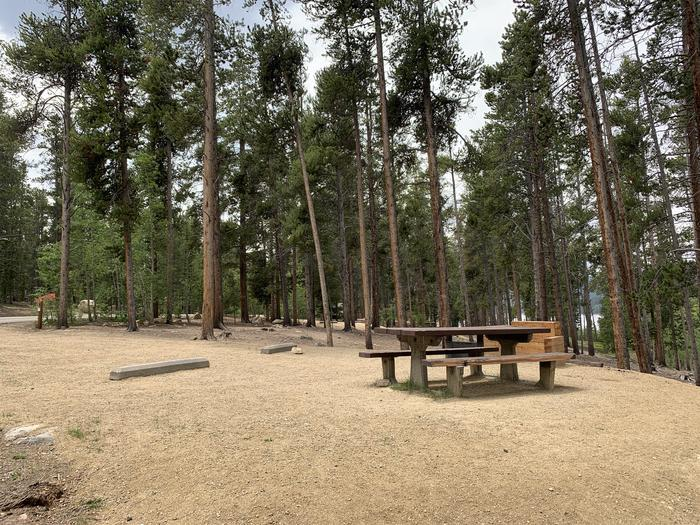 Molly Brown campground, site 8 picnic table