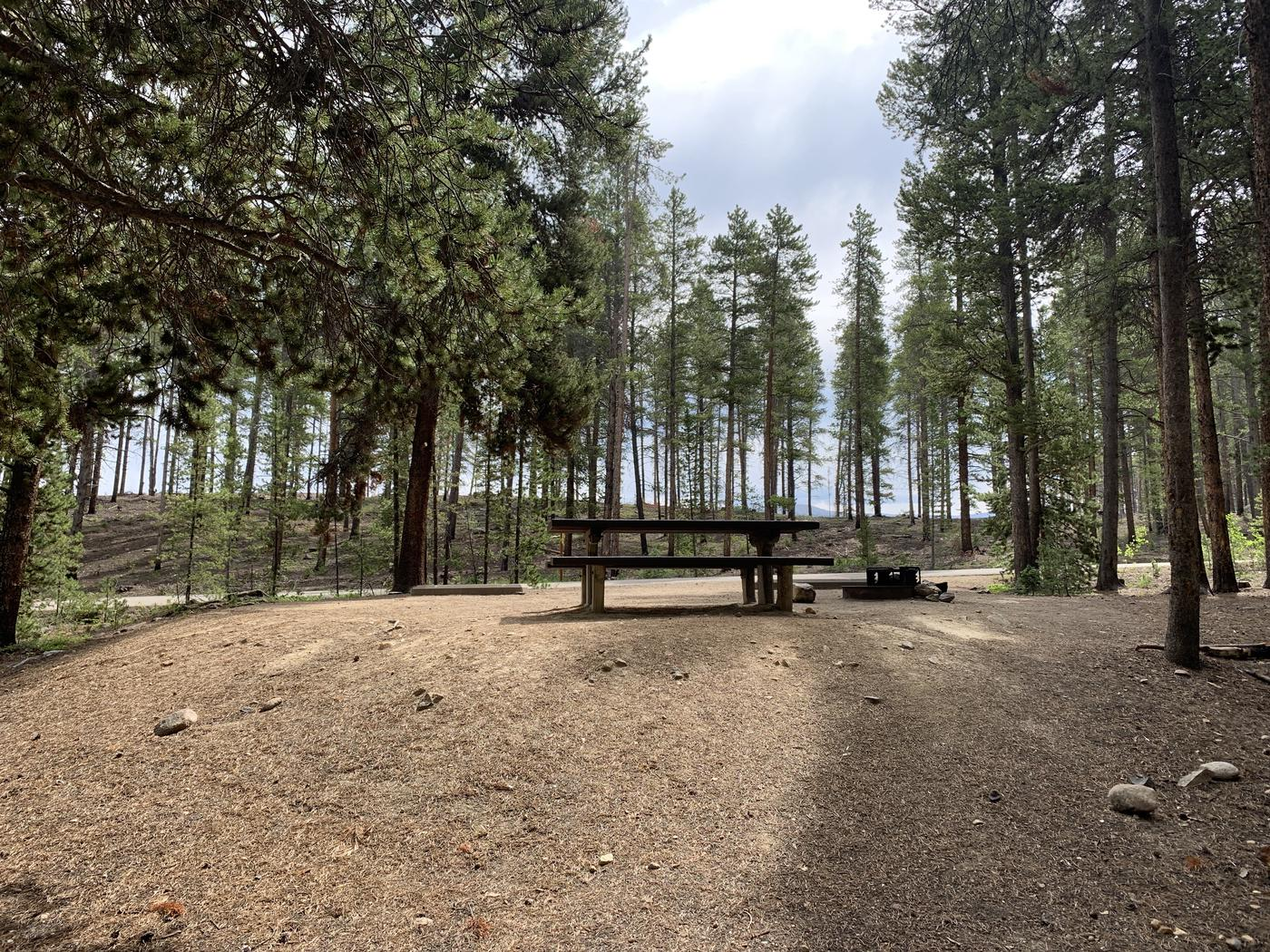 Molly Brown Campground, site 25 picnic table and fire ring 3