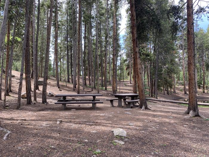 Molly Brown Campground, site 32 picnic tables and fire ring 2