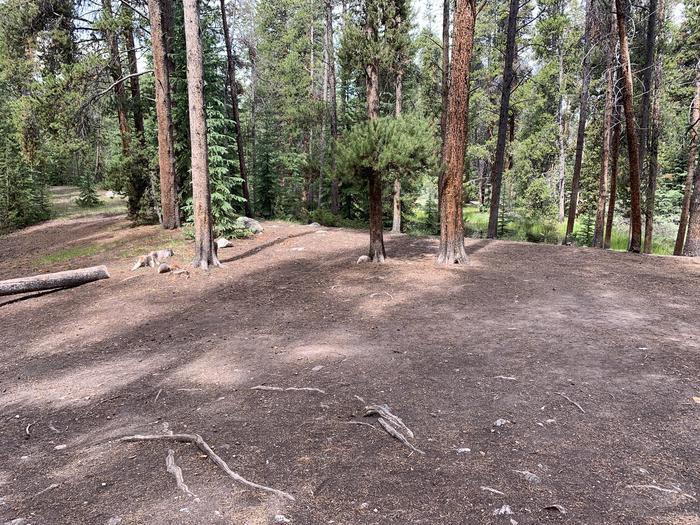 Molly Brown Campground, site 32 clearing 2