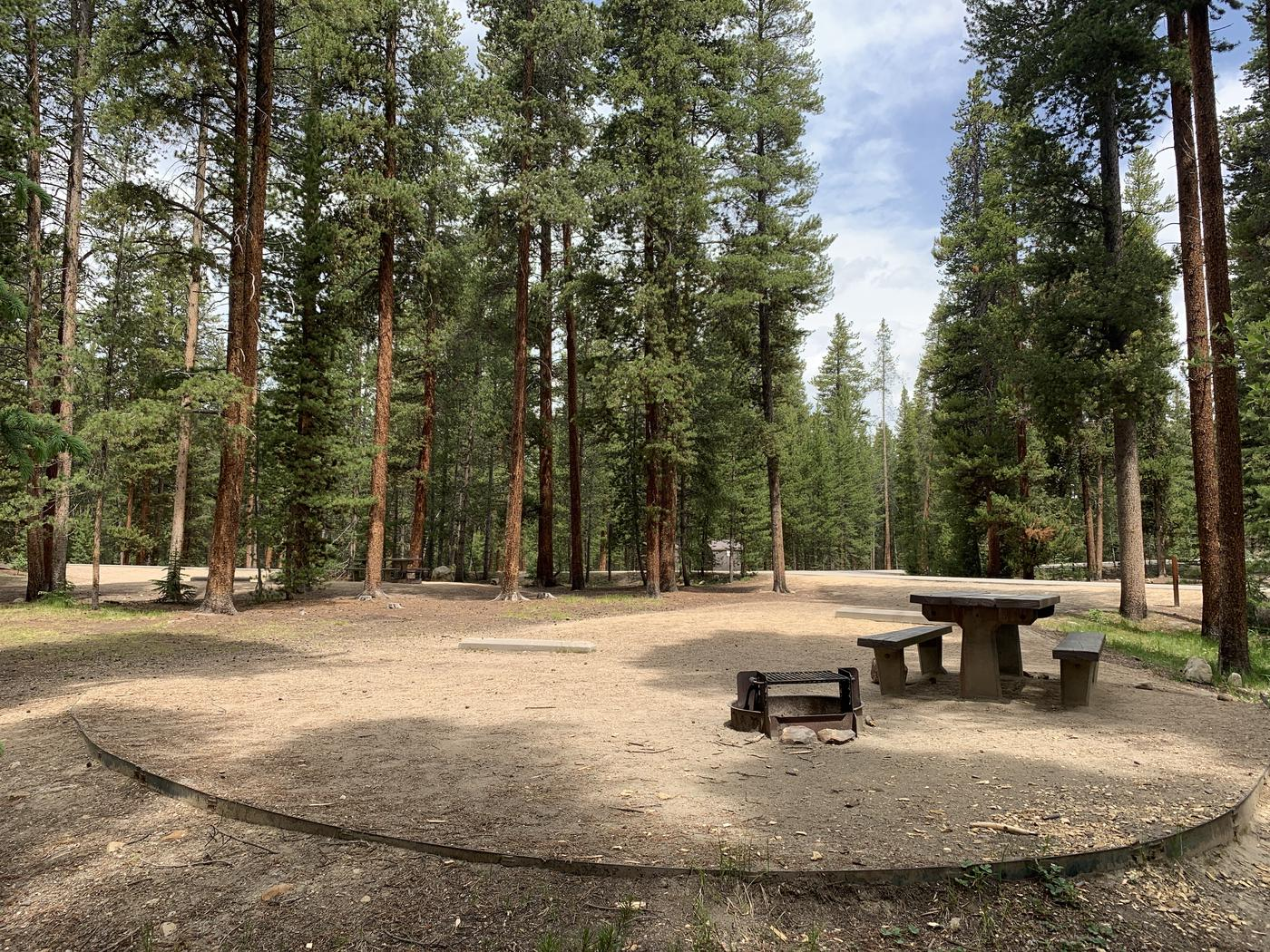 Molly Brown Campground, site 48 picnic table and fire ring 4