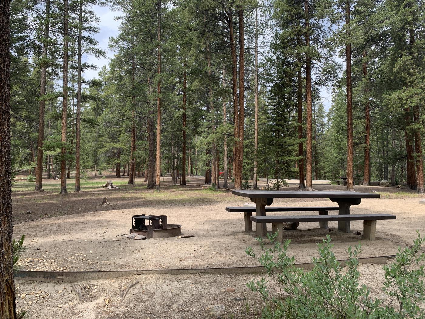 Molly Brown Campground, site 48 picnic table and fire ring