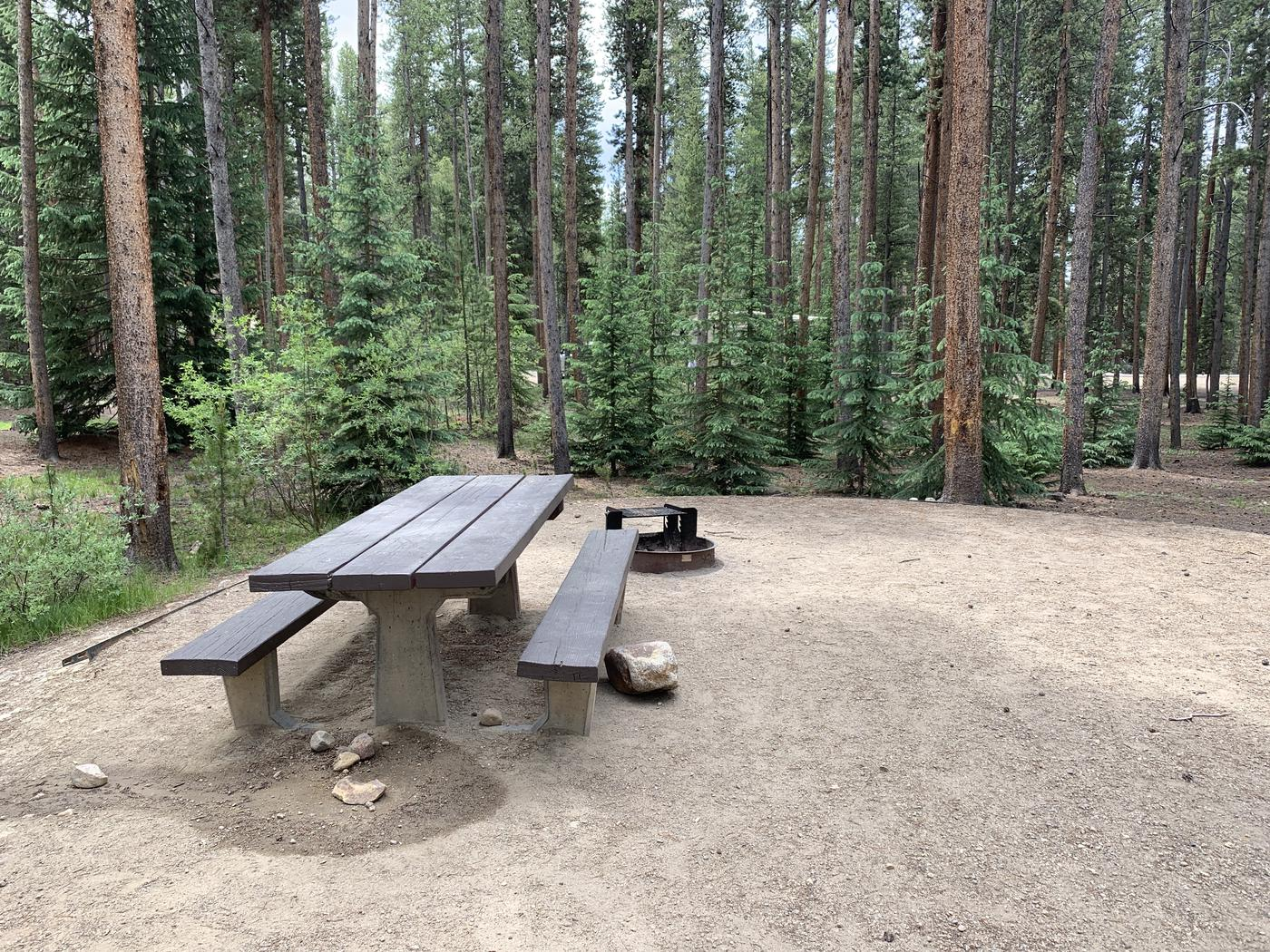Molly Brown Campground, site 48 picnic table and fire ring 2