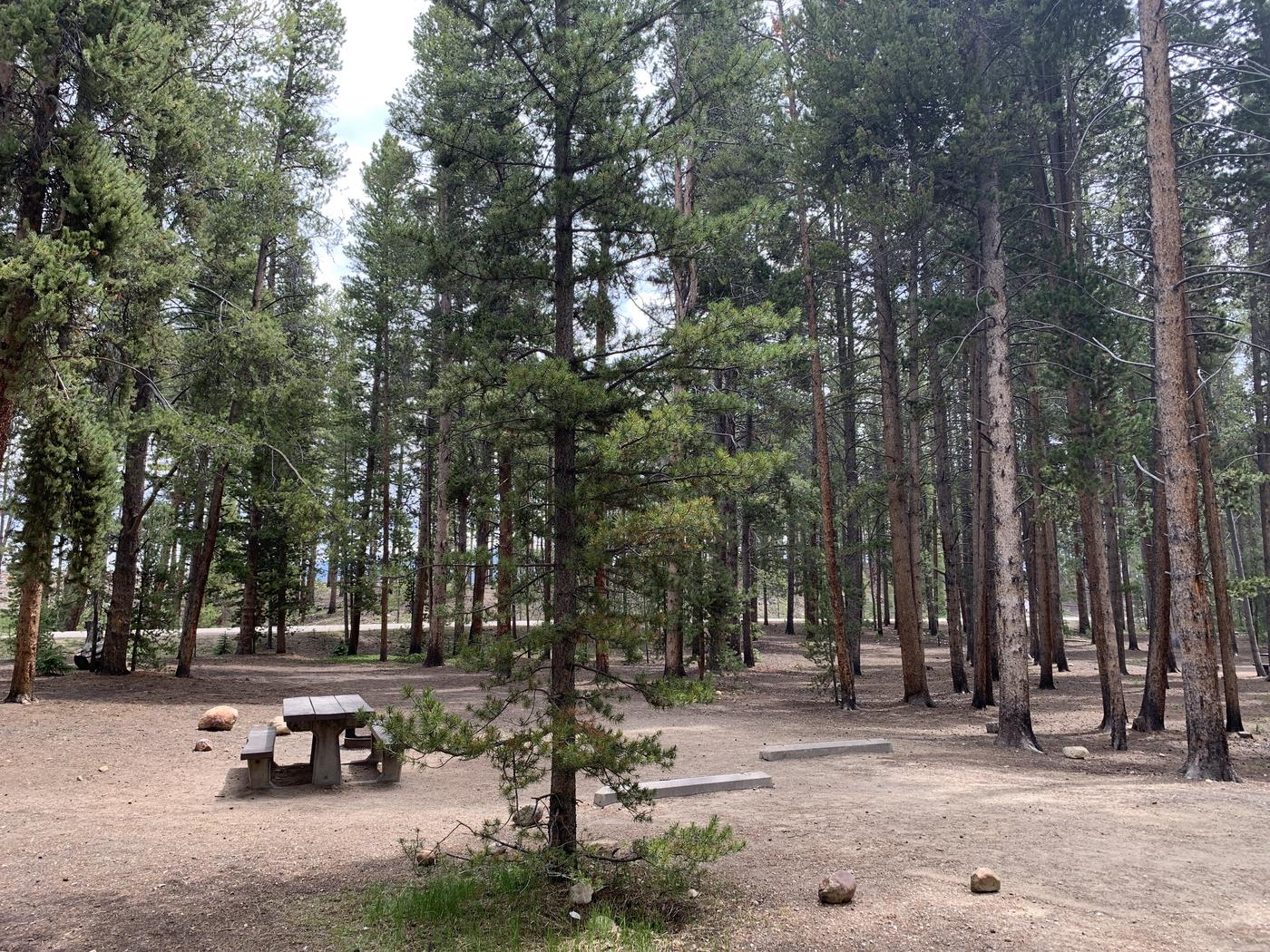 Molly Brown Campground, site 49 parking 2