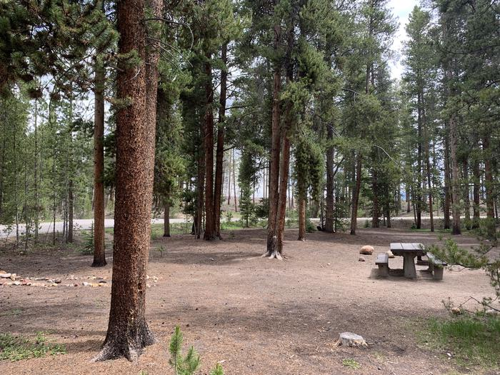 Molly Brown Campground, site 49 site view