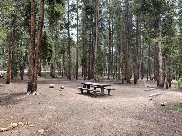 Molly Brown Campground, site 49 picnic table 2