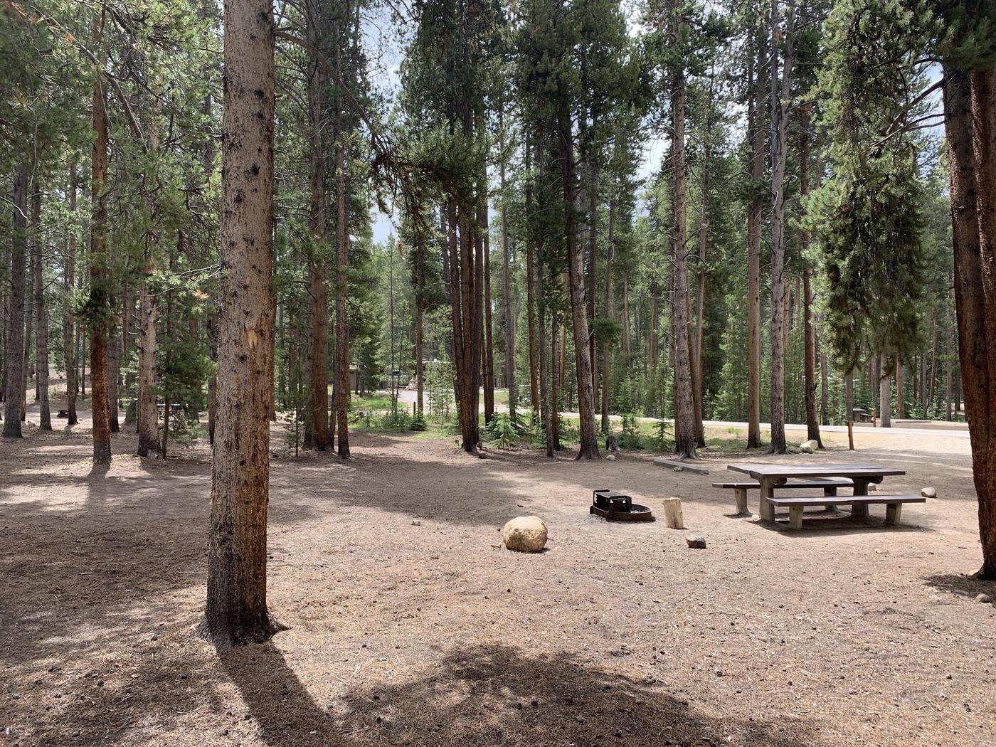Molly Brown Campground, site 49 picnic table and fire ring