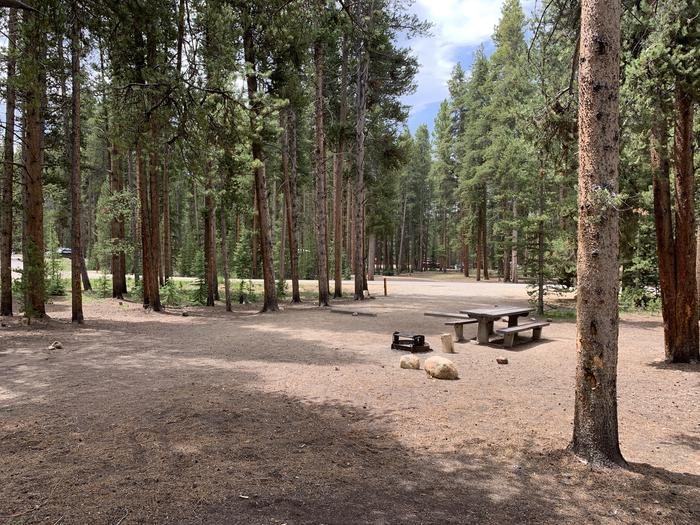 Molly Brown Campground, site 49 picnic table and fire ring 3