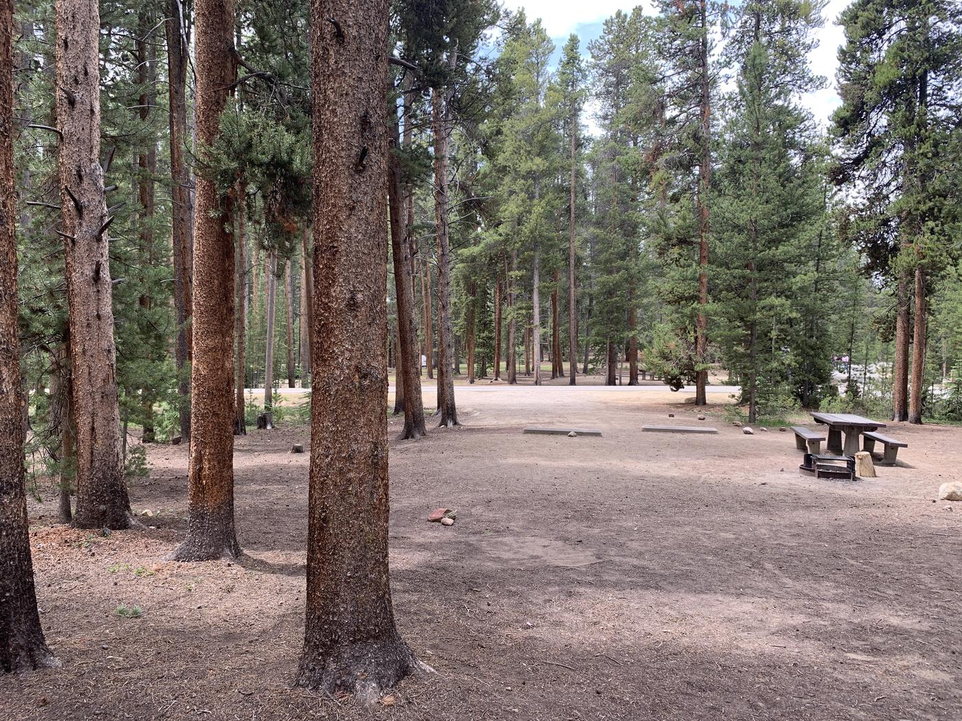Molly Brown Campground, site 49 site view 3