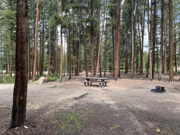 Molly Brown Campground, site 47 picnic table and fire ring 2