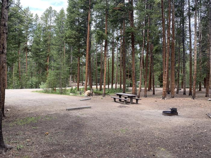 Molly Brown Campground, site 47 picnic table and fire ring