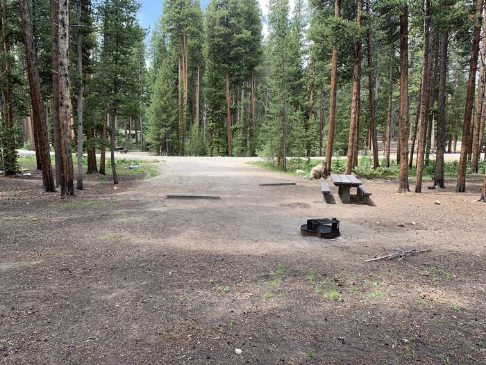 Molly Brown Campground, site 47 picnic table and fire ring 4