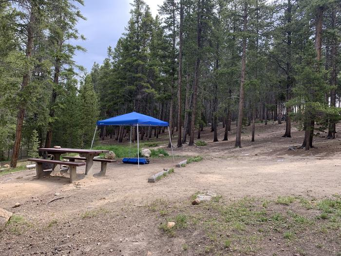 Molly Brown Campground, site 4 side view 5