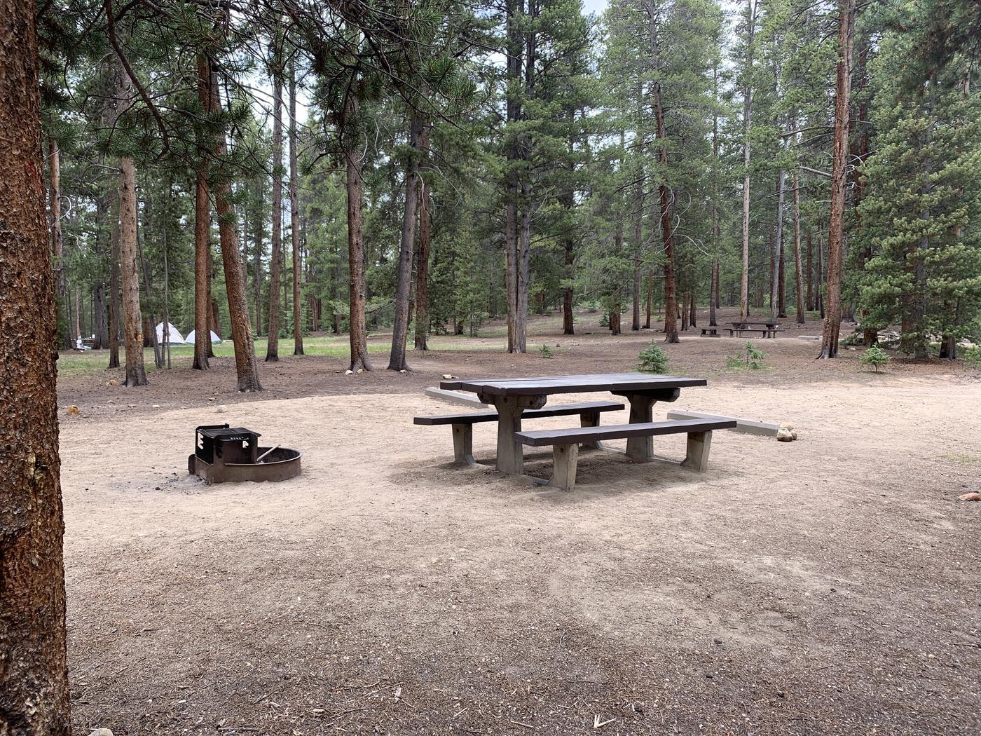 Molly Brown Campground, site 28