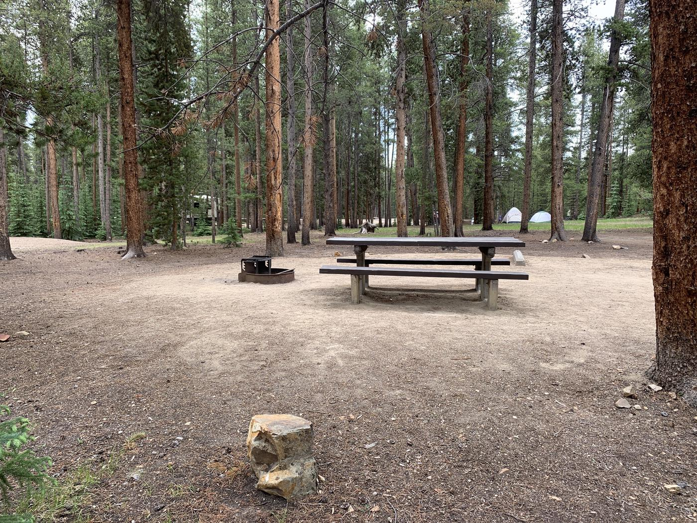 Molly Brown Campground, site 28 picnic table and fire ring 2