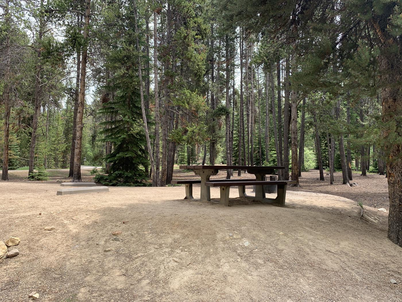 Molly Brown Campground, site 14 picnic table